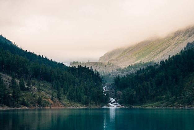 Forêt Fantomatique Près Du Lac De Montagne Tôt Le Matin Photo Premium