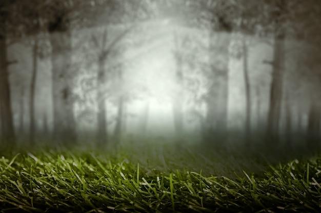 Forêt Hantée Avec Brouillard Et Fond De Scène Dramatique. Concept D'halloween Photo Premium