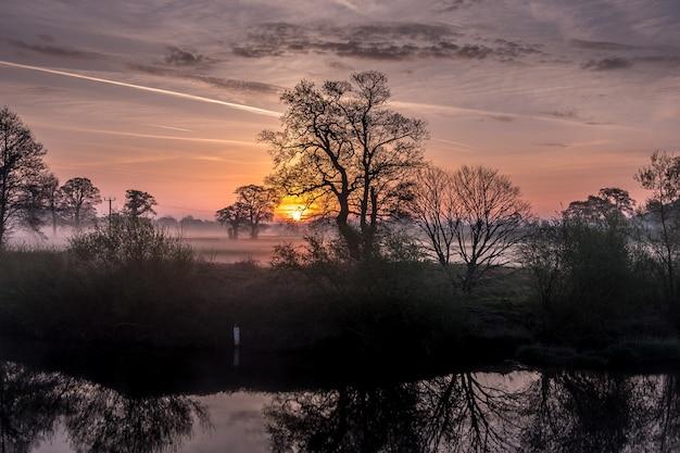 Forêt Incroyable Et Coucher De Soleil Photo gratuit
