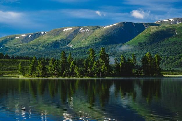 La Forêt Se Reflète Dans Les Eaux D'un Lac De Montagne Dans Le District D'ulagansky De La République De L'altaï, Russie Photo Premium