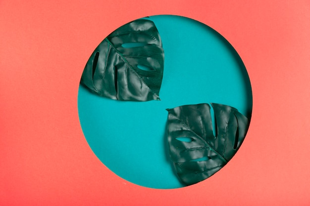 Forme de papier géométrique artistique avec des feuilles Photo gratuit