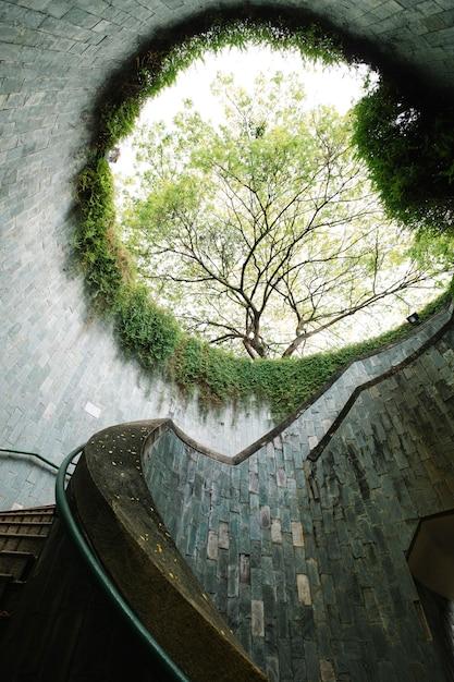 Fort en conserve à singapour Photo gratuit