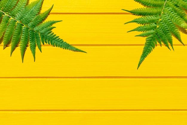 Fougère thaïlandaise couleur verte plante tropicale sur la texture du bois jaune Photo Premium