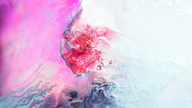Framboise congelée Photo gratuit