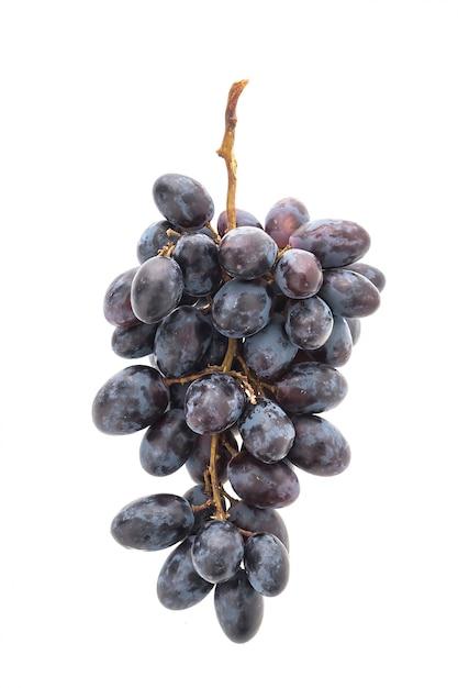 Fruit naturel moisson vigne saine Photo gratuit