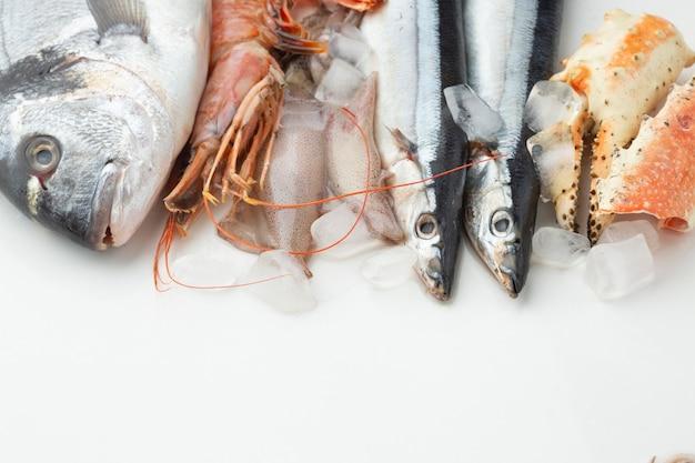 Fruits de mer frais à angle élevé avec des glaçons Photo gratuit