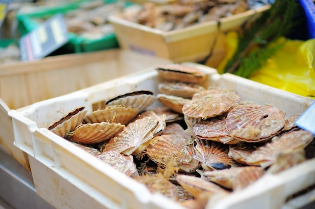 Fruits de mer frais dans une boîte blanche en vente sur le marché aux poissons de paris, france Photo Premium