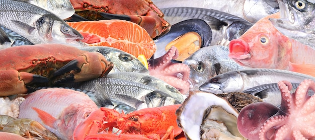 Fruits De Mer Frais Photo Premium