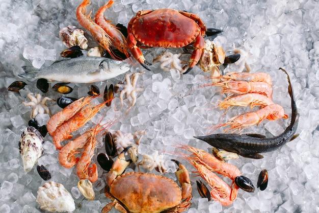 Fruits De Mer Sur Glace Photo Premium