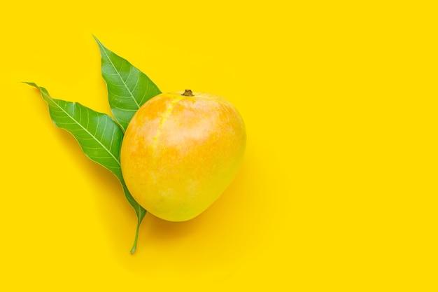 Fruits Tropicaux, Mangue Sur Jaune. Vue De Dessus Photo Premium