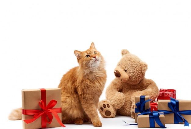 Funny Cat De Gingembre Adulte Assis Au Milieu De Boîtes Enveloppées Dans Du Papier Brun Et Attachées Avec Du Ribbo De Soie Photo Premium