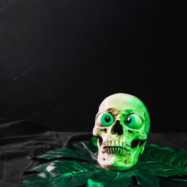 Funny crâne illuminé par une lumière verdoyante Photo gratuit
