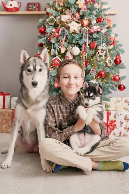Garçon Enfant Avec Des Chiens Chiots Husky Et Arbre De Noël. Photo Premium