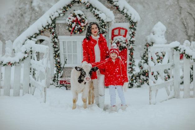 Garçon Et Femme Brune Posant Avec Petit Taureau Au Ranch D'hiver Avec Décor De Noël. Neige Photo Premium