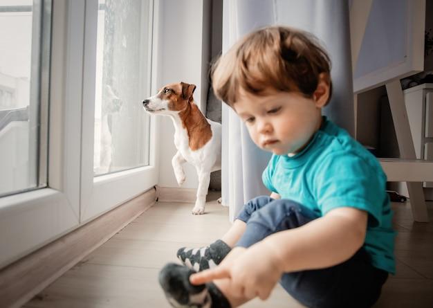 Garçon jouer avec son chien jack russell terrier. Photo Premium