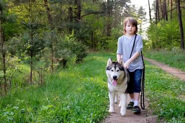Garçon Avec Son Chien Malamute Sur Une Promenade Dans La Forêt Photo Premium