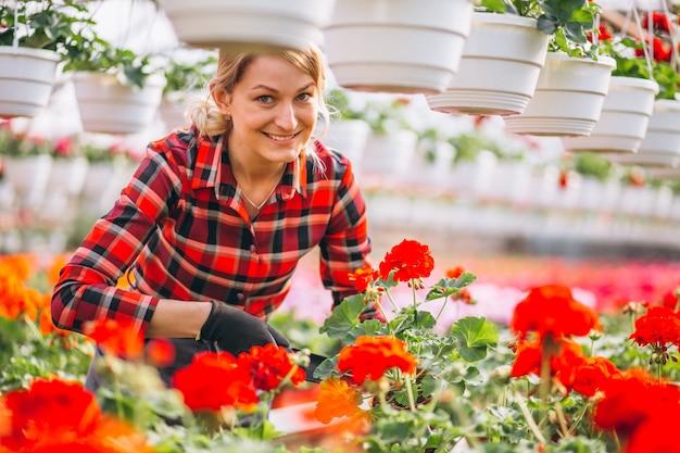 Gardner femme regardant des fleurs dans une serre Photo gratuit