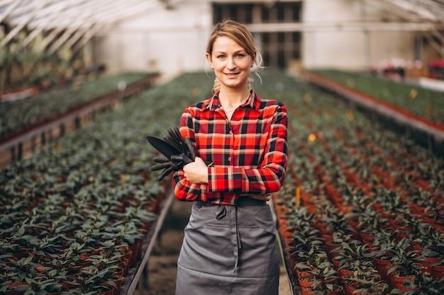 Gardner Femme S'occupant De Plantes Dans Une Serre Photo gratuit