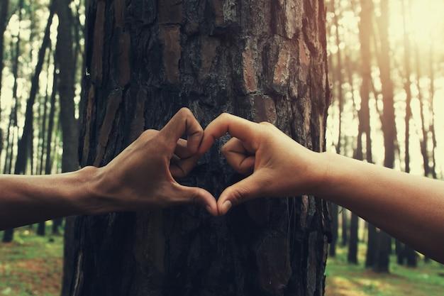Les Gens à La Main Forme De Coeurs Sur L'arbre Avec Le Soleil Photo Premium