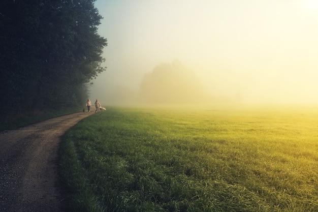 Les Gens Qui Marchent Sur Le Champ D'herbe Verte Pendant La Journée Photo gratuit