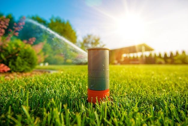 Gicleur de pelouse en action Photo gratuit