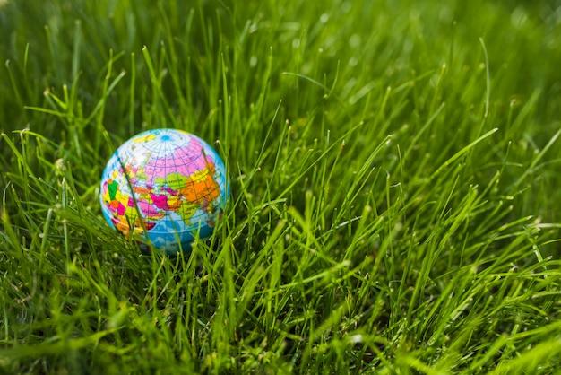 Globe gonflable sur l'herbe verte Photo gratuit