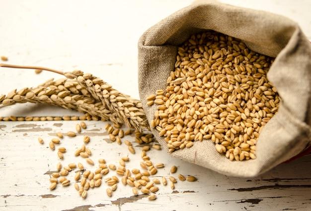 Graine de rang de blé dans un sac en tissu et des céréales de plantes sur un tableau blanc. Photo Premium