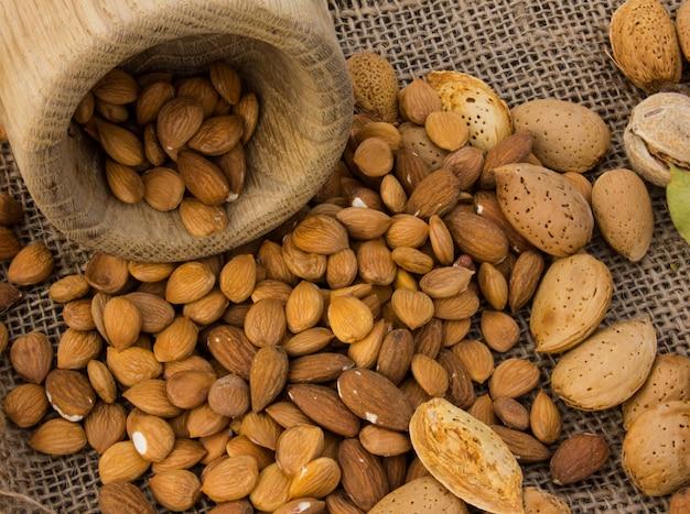 Graines D'abricot. Graines Fraîches, Entières Et Cassées. Une Belle Texture Photo Premium