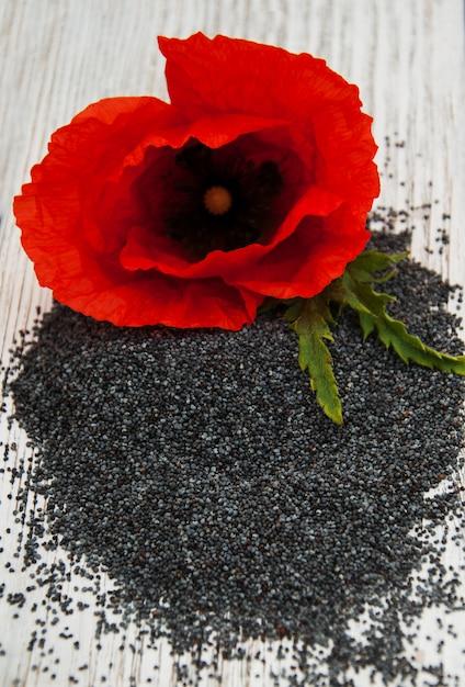 Graines de pavot et fleurs Photo Premium