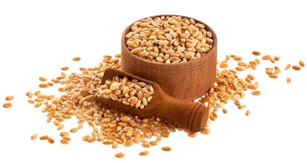 Grains de blé dans un bol en bois avec cuillère isolé sur blanc Photo Premium