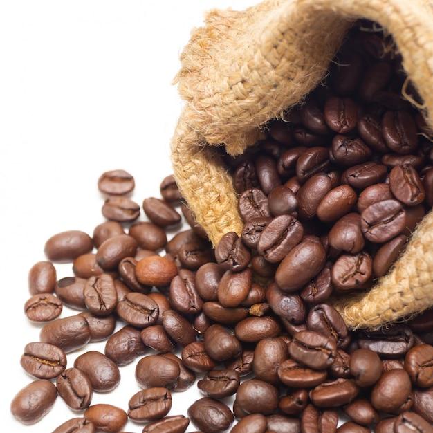 Grains de café biologiques et louche de café en bois Photo Premium