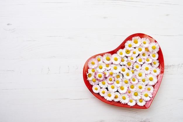 Grand coeur de fleurs de marguerite sur fond en bois blanc. espace de copie, vue de dessus. fond de vacances. Photo Premium