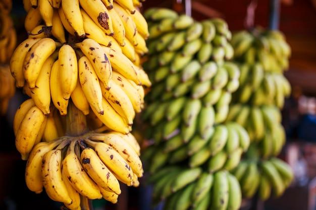Un grand paquet de bananes jaunes et vertes sur une branche dans un paquet, accroché à l'étal du marché Photo Premium