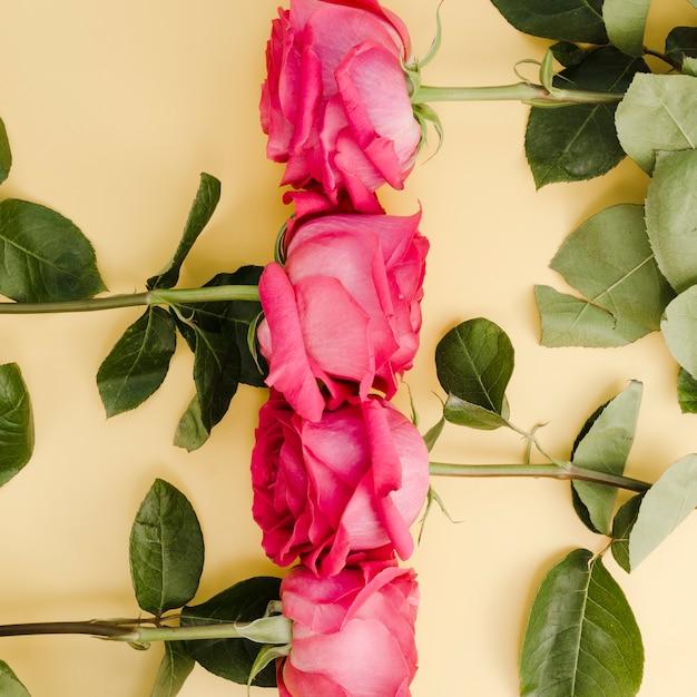 Grand Plan, De, Beau, Arrangé, Roses Photo gratuit