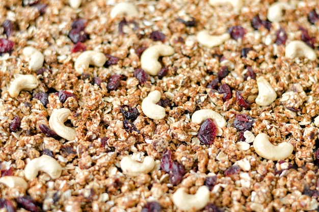 Granola aux noix de cajou et aux canneberges Photo Premium