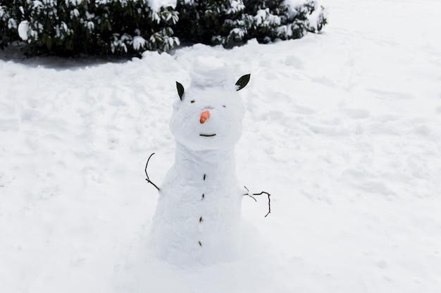Gros plan d'un bonhomme de neige sur un terrain enneigé en hiver Photo gratuit