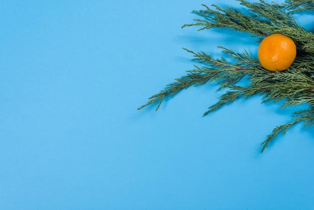 Gros Plan Des Branches De Genévrier Et Des Mandarines Photo Premium