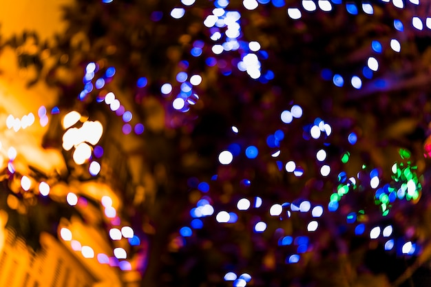 Gros plan, défocalisé, fée, lumière, sur, arbre Photo gratuit