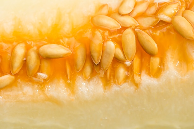Gros plan, délicieux, melon miel Photo gratuit