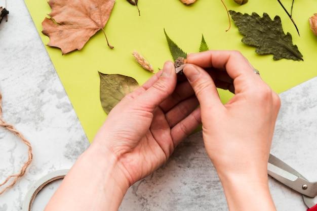Gros plan, femme, coller, feuilles, papier vert Photo gratuit