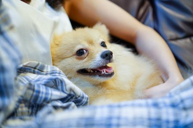 Gros plan femme étreignant le chien dans la chambre. jeune personne avec un chien à la maison, loisir, moment heureux et aime-moi, aime mon chien. Photo Premium