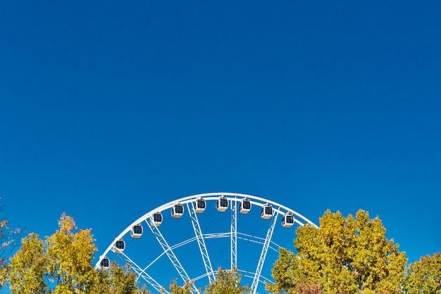 Gros Plan D'une Grande Roue Près Des Arbres Sous Un Ciel Bleu Clair Photo gratuit