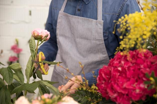 Gros plan, homme, couper, feuille, rose, pivoine, fleur, ciseaux Photo gratuit