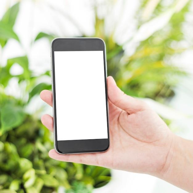 Gros plan, de, main femme, tenir téléphone portable, à, blanc, écran blanc Photo gratuit