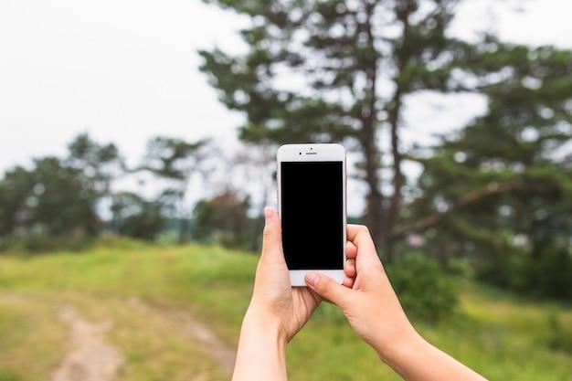 Gros plan, mains, claquement, sur, smartphone, dans, les, forêt Photo gratuit