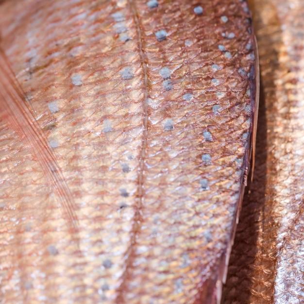 Gros plan de poisson congelé en magasin Photo gratuit
