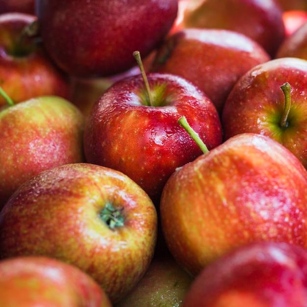 Gros plan de pommes biologiques mûres rouges Photo gratuit