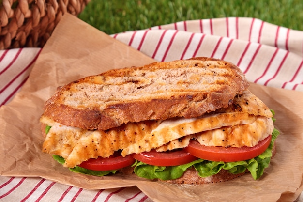 Gros Plan Sandwich Au Poulet Grillé Photo gratuit