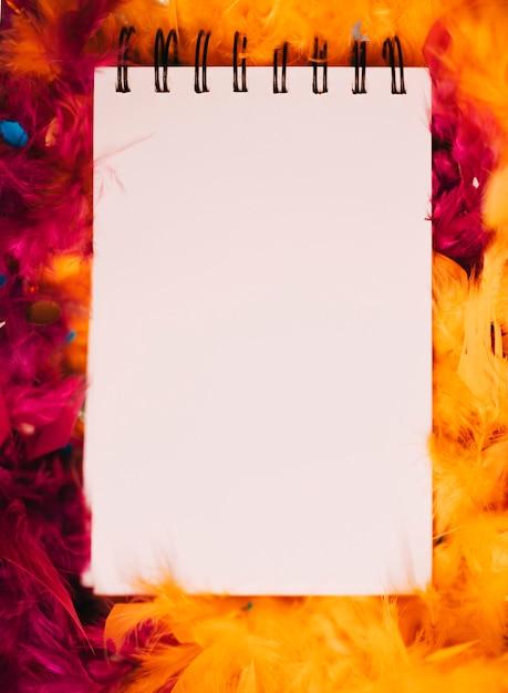 Gros plan, de, spirale, bloc-notes, devant, boa orange, plume rouge Photo gratuit