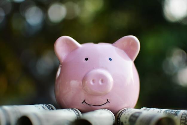 Gros plan d'une tirelire rose heureuse avec le billet de banque. Photo Premium